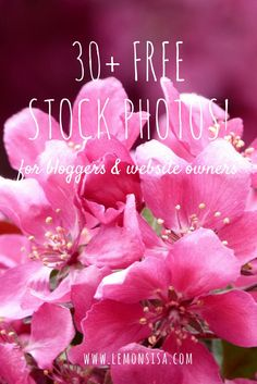 Are you a female entrepreneur, a blogger or an online business owner who is in constant need of gorgeous, feminine, high-quality photos for your website? Click the image to receive a free set of 30+ styled stock images.