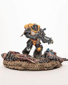 Warhammer Paint, Warhammer Models, Warhammer Fantasy, Warhammer 40000, Paint Schemes, Colour Schemes, Guardia Imperial 40k, Miniaturas Warhammer 40k, Imperial Fist
