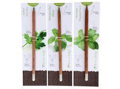 """Grow Pencil, o lápis aromático com sementes, que quando """"for pequeno"""", quer ser uma planta"""