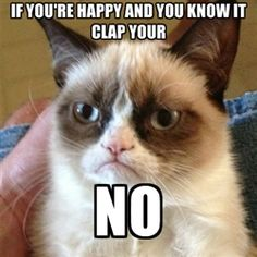 Grumpy Cat 1 - If you're happy and you know it clap your no