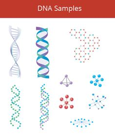 Buy DNA Samples by pixelscube on GraphicRiver. Different Science DNA Samples Vector. - Easy to edit Please rate! Dna Design, Logo Design, Science Symbols, Data Science, Data Logo, Human Dna, Symbol Tattoos, Vector Design, Design Templates