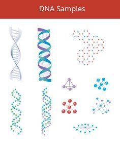 DNA Samples Vector by DesignMarket on Creative Market