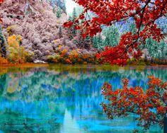 15 Fotos de Natureza
