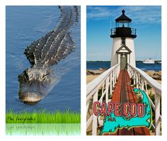 Snapchat user-created geofilters for Cape Cod and The Everglades