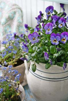Love the idea of using the white and blue crock as a planter...