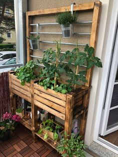 Small Balcony Garden, Rooftop Garden, Plant Decor, House Plants Decor, Garden Boxes, Backyard Patio, Garden Projects, Garden Inspiration, Outdoor Gardens