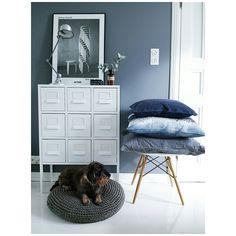 Blue entryway with Ikea 'Sprutt' cabinet