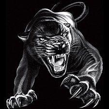 Black Panther T-shirt, Panther Tattoo T-shirt, Small, Black Emo,http://www.amazon.com/dp/B0015OAQX6/ref=cm_sw_r_pi_dp_06qCsb0WGV8T2MQG