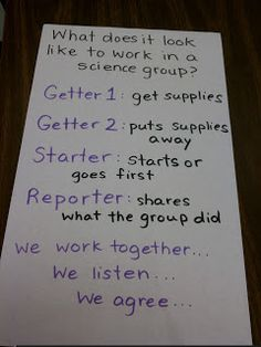 Science groups - cooperative learning.