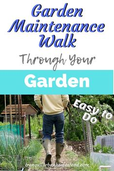 Garden Maintenance Walk: The Best Way To Keep on Top of Things : Do you want to keep on top of what is going on in your garden? Taking a regular garden maintenance walk will help you grow better vegetables and fruit. Prune Fruit, Gratitude Book, Japanese Beetles, Garden Storage Shed, Plant Diseases, Garden Maintenance, Garden Journal, Weed Control, Drought Tolerant Plants