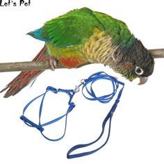 2X Birds Parrots Fruit Fork Pet Supplies Plastic Food Holder Feeding On Cage ne