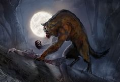 There's someone in the wolf Werewolf Vs Vampire, Werewolf Art, Apocalypse, Dark Fantasy, Fantasy Art, Besta, Vampires And Werewolves, Big Bad Wolf, Magical Creatures