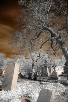 The Watcher © Joseph A. Gothic Photography, Types Of Photography, Art Photography, Old Cemeteries, Graveyards, Gardens Of Stone, American Cemetery, Infrared Photography, Film Images