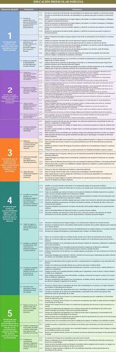 Perfil, Parámetros e indicadores Educación Preescolar Indigena