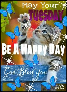 May Your Tuesday Be Happy quotes quote days of the week good morning tuesday tuesday quotes happy tuesday tuesday quote Good Morning Facebook, Good Morning Tuesday, Good Morning Friends, Good Morning Good Night, Good Morning Images, Good Morning Quotes, Morning Pictures, Happy Tuesday Quotes, Tuesday Humor