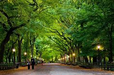 Top 25 parks around the world | TripAdvisor
