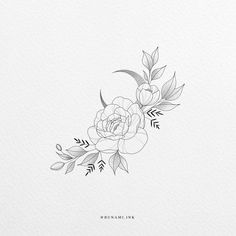 Floral Drawing, Lotus Flower, Peony, Ink, Tattoos, Drawings, Flowers, Inspiration, Ideas