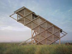 Organic Architecture: Bird Observation Tower