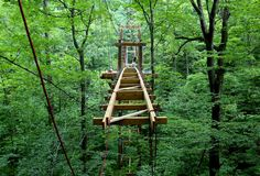 Holden Arboretum Canopy Walk and Emergent Tower - Photo Gallery - cleveland.com