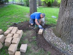 Be careful not to cut into ground around tree. Can put concrete in a circle around tree and build on top, but keep in mind, roots may break through. Do not put soil in landscape area; will suffocate roots. Just lay down landscape cloth and put gravel and mulch down.