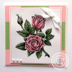 Stampin with Paula