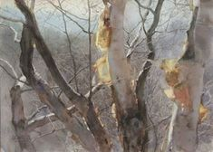 Amazing - Chinese Watercolor Artist Guan Weixing Autumn Rhythm (watercolor on paper, Not usually into realism but this is beautiful. Watercolor Trees, Watercolor Artists, Watercolor Portraits, Watercolor Techniques, Watercolor Landscape, Watercolor And Ink, Watercolour Painting, Landscape Art, Landscape Paintings