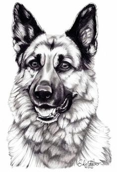 Gsd drawing