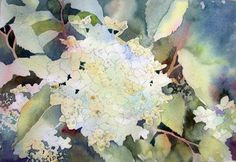 Ann Mortimer's Painting Blog: Late Summer Hydrangea step by step demo