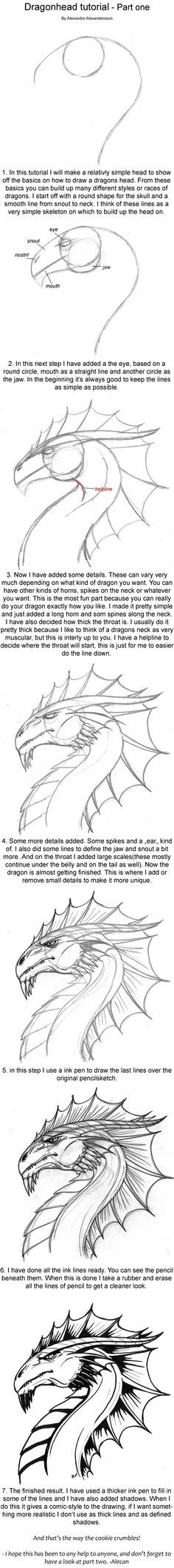 Drawing Animals Tips Dragonhead Tutorial part one by alecan on deviantART Drawing Lessons, Drawing Techniques, Drawing Tips, Drawing Reference, Drawing Tutorials, Art Tutorials, Art Lessons, Animal Drawings, Cool Drawings