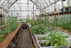 greenhoues kitchen | Iqaluit: A Community Greenhouse Update | Sybaritica