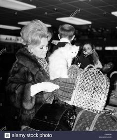 I learned about Furs and Vuitton because I keep up with Old Hollywood when I was young and cute!