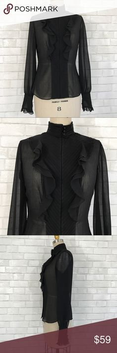 Antonio Melani black sheer blouse size 4 Antonio Melani long sleeve sheer blouse ruffle front.  Size 4, runs big, button high neck, button long sleeves, 100% Polyester   Ⓜ️Chest 36 Ⓜ️Length 24 Ⓜ️Sleeves 26  ✅Bundle and save  ✅🚭 ✅ all reasonable offers will be considered 🚫No Trading 🙅🏻 Poshmark rules only‼️ ANTONIO MELANI Tops Blouses