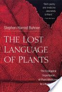 The Lost Language of