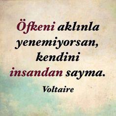 Öfkeni aklınla yenemiyorsan kendini insandan sayma... Voltaire.