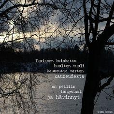 #runo #runokuva #runous #runoilija #valokuva #kaunokirjallisuus #lukeminen #suomeksi #kauneus #ikuisuus #ylpeys #katsomahdotonta #lempeyskatsootakaisin Bujo, Instagram