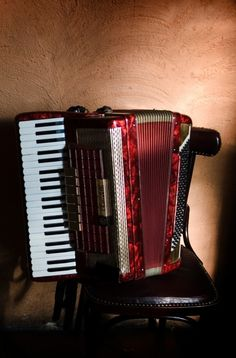 I want to learn how to play accordion! Also, this is a beautiful instrument. Love the color.