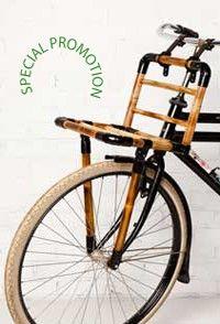Dutch Bamboo Design