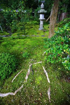 京都南禅寺大寧軒の苔と灯篭