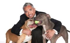 Cesar Millan (Dog Whisperer)