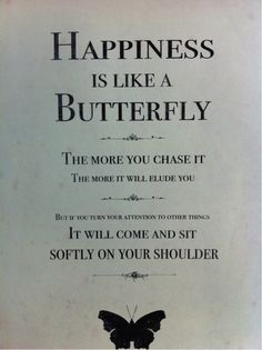 This is why I like butterflies..