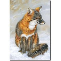 Animal Drawings - General Features High Quality Giclée Wrap Latex Ink - Baked into Canvas Made-to-Order in USA Scratch Resistant 200 Year Ink - Limited Edition Full Deep Canvas Wrap Outdoor Features Waterproof Canvas, Inks Fox Painting, Painting Prints, Wall Art Prints, Paintings, Kawaii, Crayons Pastel, Grey Fox, Fox Art, Animal Drawings