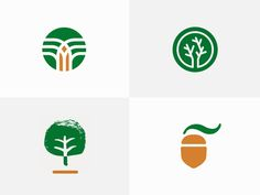 Trees and Acorn (Logo Options)