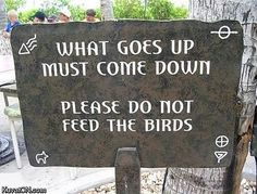 Please do not feed the birds neighbours!!