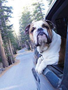 road trippin'..