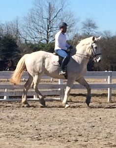 We at River Run Equestrian offer safe and result-driven equine therapy.