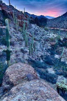 Gate's Pass, Tucson share moments