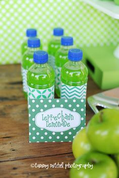 St. Patrick's Day Birthday Party - Kara's Party Ideas - The Place for All Things Party