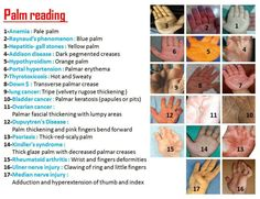 Palm Readings Here!! - PositiveMed