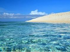 「西表島」の画像検索結果