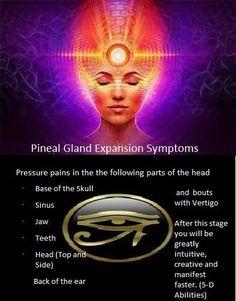Third Eye Awakening, Spiritual Awakening, Spiritual Quotes, Aura Colors, Pineal Gland, Quotable Quotes, Deep Thoughts, Reiki
